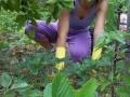 i10-2343-elide-vivian-in-garden