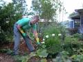 wwoofer-verona-in-garden